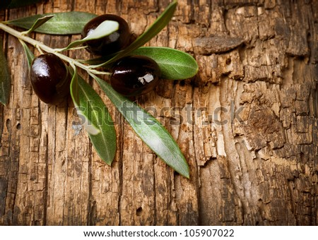 Olive Branch over Wood background - stock photo
