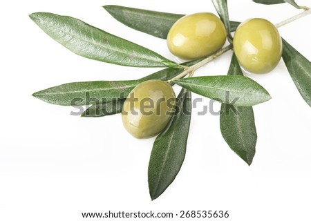 olive branch with three olives on the white - stock photo