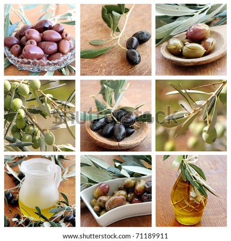 Olives and Olive Oil collage - stock photo