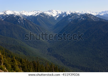 Olympic National Park - stock photo