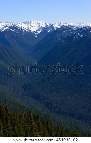 Olympic National Park - stock photo