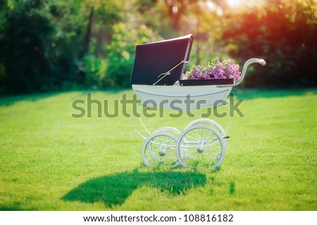 on a green field in beams of the sun there is a beautiful baby carriage
