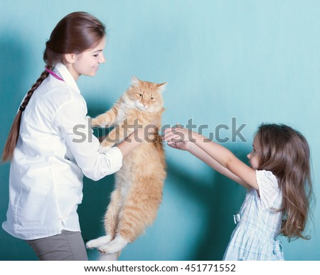 on reception at the vet.little girl gets the cat out of the hands of a girl vet.toned  - stock photo