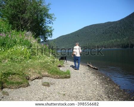 On stony shore dog walking  - stock photo