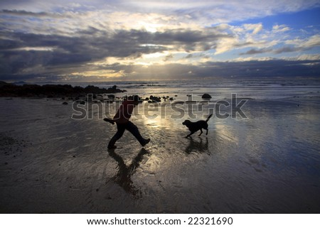 On the beach near to sunset with the dog enjoying himself