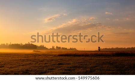 On the field in the morning mist - stock photo