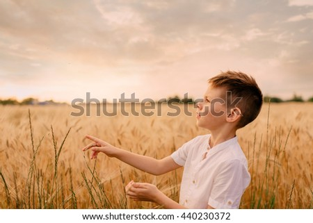 on the field with mature wheat walks a little boy in a white shirt - stock photo