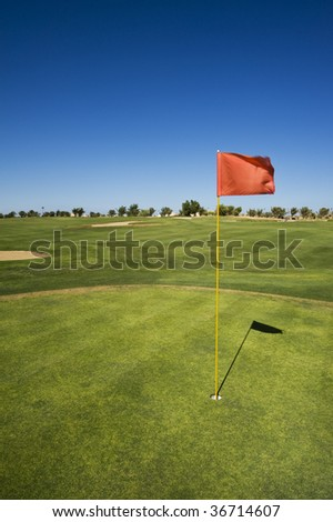 On the green - stock photo