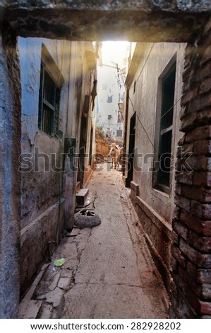 On the narrow street in the old city of Varanasi. Uttar Pradesh, India