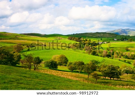 On the pasture in Yorkshire Dales in Great Britain - stock photo