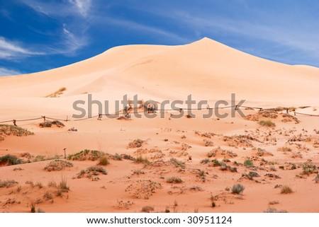 On the Pink Sand Dune National park. Utah. USA - stock photo