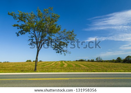 On the Road - In the countryside on the side of the road on a beautiful day - stock photo