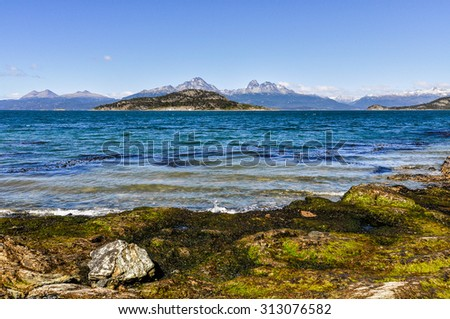 On the shore, Tierra del Fuego National Park, Ushuaia, Argentina - stock photo