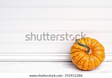 One Beautiful Fall Mini Pumpkin on White Board Background with empty room or space for copy, text.  Horizontal, slight grunge treatment - stock photo