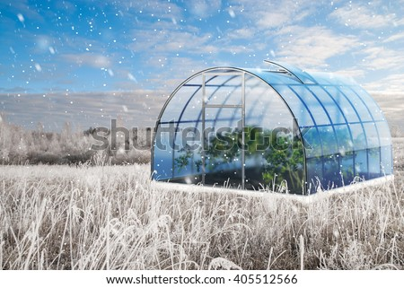 One blue empty round 3d greenhouse  in summer