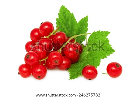 One bunch of ripe redcurrant with green leaves isolated on white background - stock photo
