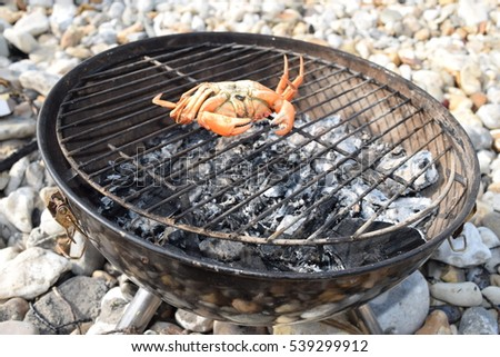 One crab on the barbecue grill on the beach ready to cook