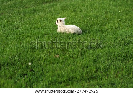 One cute sheep lying on the lush fresh green grass on bright natural background copyspace, horizontal picture