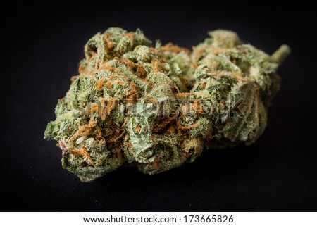 one dose of marijuana, medical hemp - stock photo