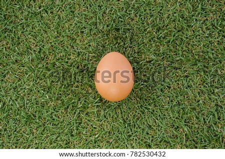 One egg bubble on the lawn.