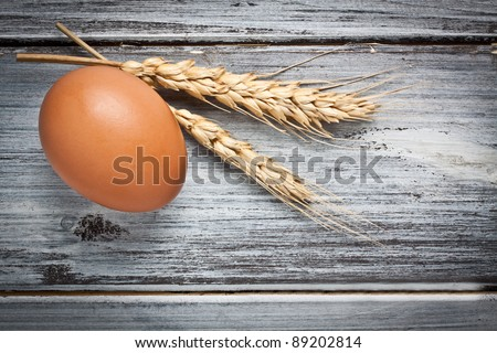 one egg with two ears on a wood table - stock photo