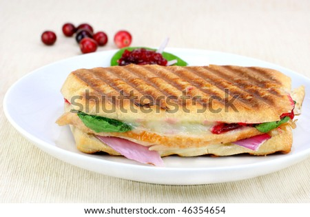 One fresh panini of turkey, spinach, red onion, melted cheese and homemade cranberry sauce. - stock photo