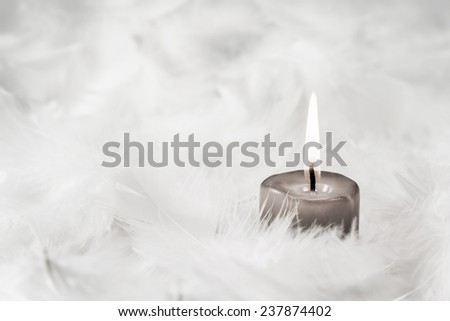 One grey burning candle on white background with feathers. - stock photo