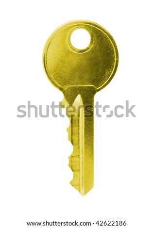 One grey key on a white background - stock photo