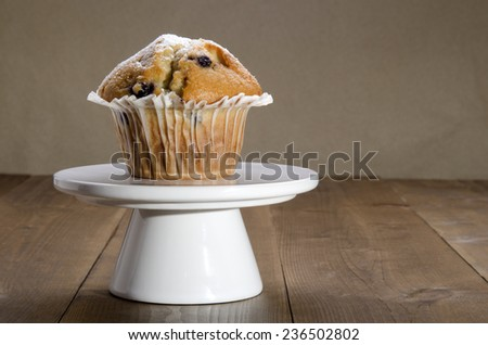one home made blueberry muffin on a cake stand - stock photo