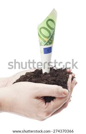 One hundred euro growing like a plant isolated on a white background - stock photo