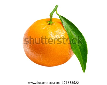 one mandarin isolated on white background