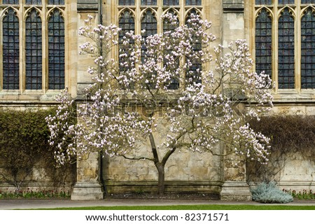 One of many colleges in Oxford, England. - stock photo