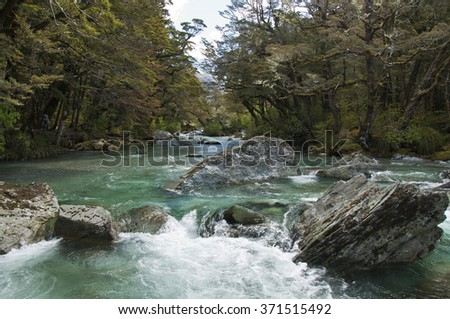 One of many river crossing along the Routeburn Track - stock photo