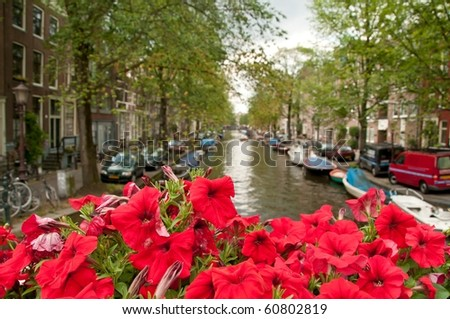 One of the channels in Amsterdam. Focus on the lovely red flowers. - stock photo