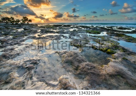 One of the reef Florida Keys islands at sunrise. Florida Keys, USA. - stock photo