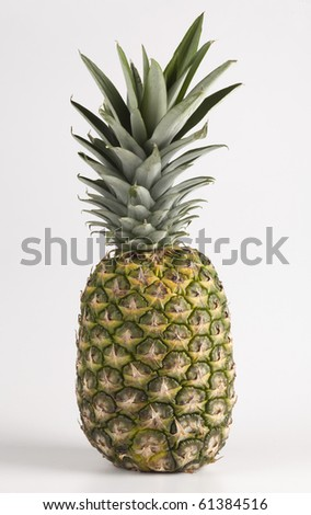 One Pineapple on a white background - stock photo