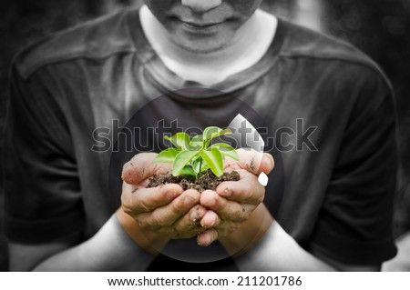 One plant in female hands on black and white background
