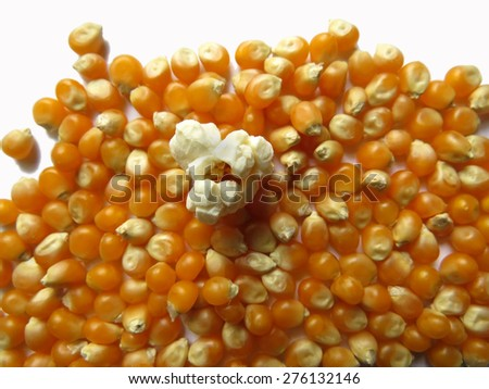 One popped kernel stands out from the crowd in this popcorn image - stock photo