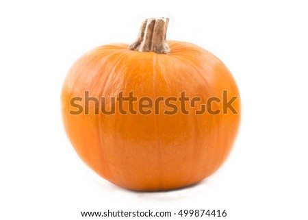 one pumpkin isolated on white background