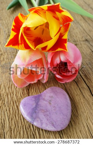 One purple stone heart and three tulips on a rustic wooden plank - stock photo