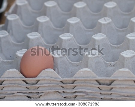 One raw egg lying lonely in the egg packaging made from recycled paper.  - stock photo