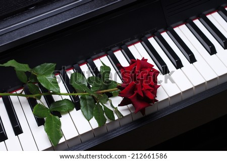 One red rose on a piano keyboard
