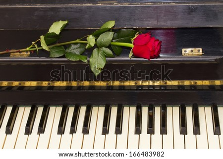 one red rose on vintage black piano - stock photo