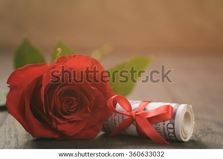 one red roses and bunch of dollars - stock photo