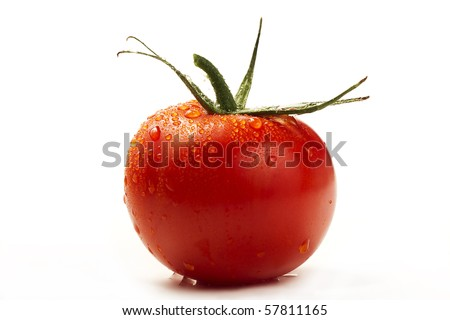 one red wet tomato isolated on white background
