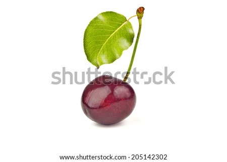one ripe, juicy, delicious sweet cherry and green leave isolated on white background