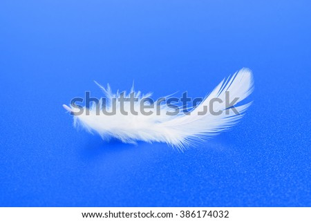 One small white feather on textured blue background - stock photo