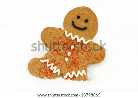 One smiling gingerbread cookie in snow with copy space.