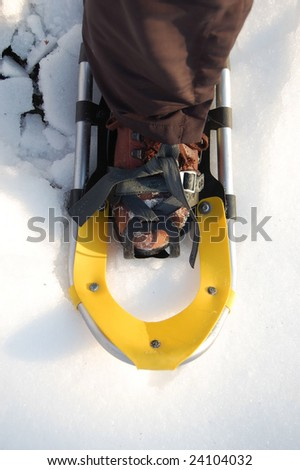 one snowshoe close-up - stock photo