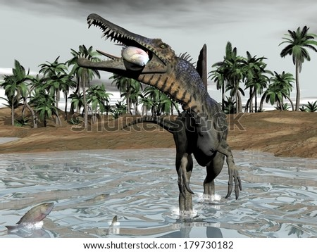 One spinosaurus dinosaur walking in water and eating fish by cloudy day - stock photo